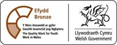 bronzw award for youth work in wales